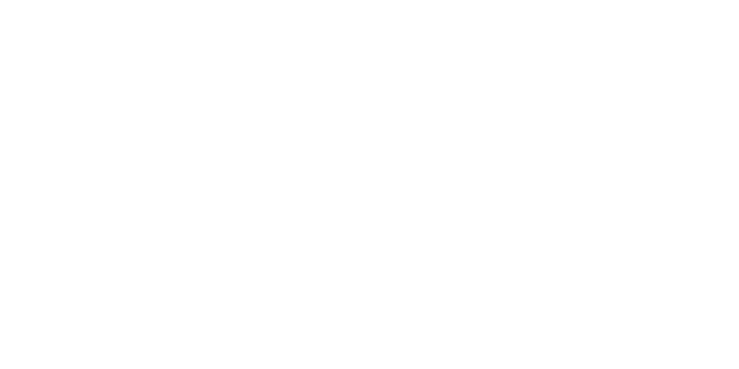 Craig Staley Logo White